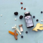Kosttilskud naturlige vitaminer mineraler foodstate Nani Q10 hos Lykke & velvære i Helsingør Nordsjælland