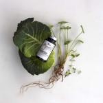 Kosttilskud naturlige vitaminer mineraler foodstate Nani vegatabilsk Magnesium hos Lykke & velvære i Helsingør Nordsjælland