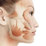 Bindevævs- og muskelmassage Ansigtsmassage i Proskin ansigtsbehandling med Dermalogica Expert hos Lykke & velvære Helsingør Nordsjælland